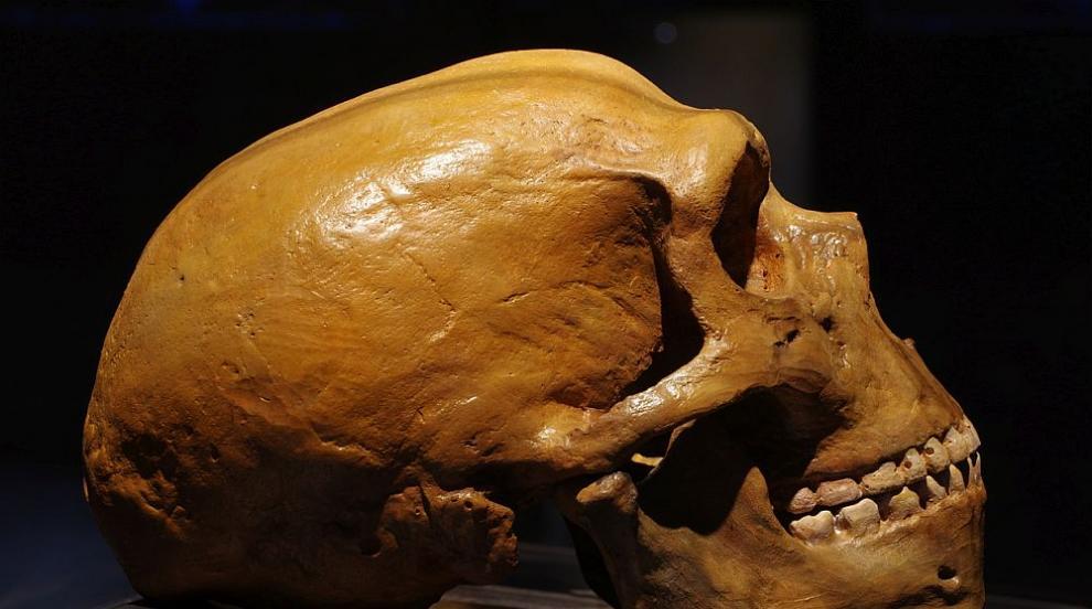 Реконструираха денисовския човек - сродника на неандерталците (СНИМКА)