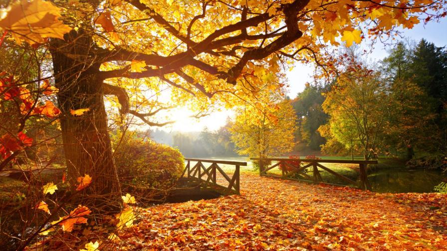 <p>Какво ще е времето в последния ден на септември</p>