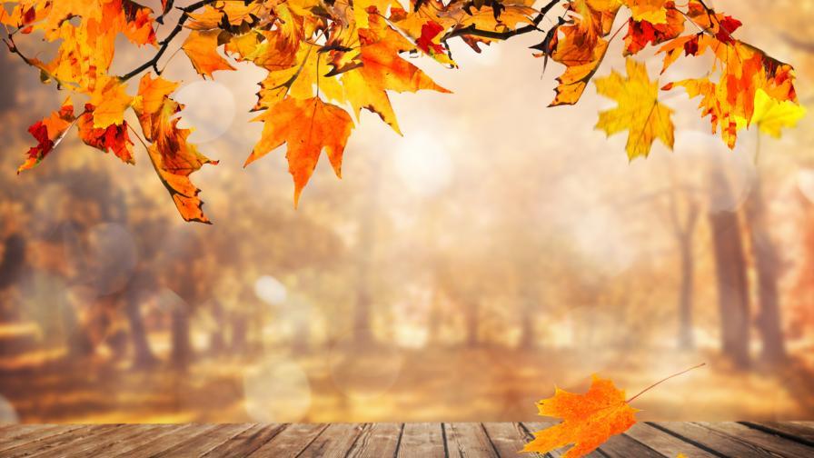 <p>Георги Рачев: Не се очаква сняг през октомври. Каква ще е зимата&nbsp;</p>