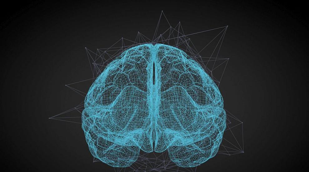 Мозъкът работи най-добре през есента