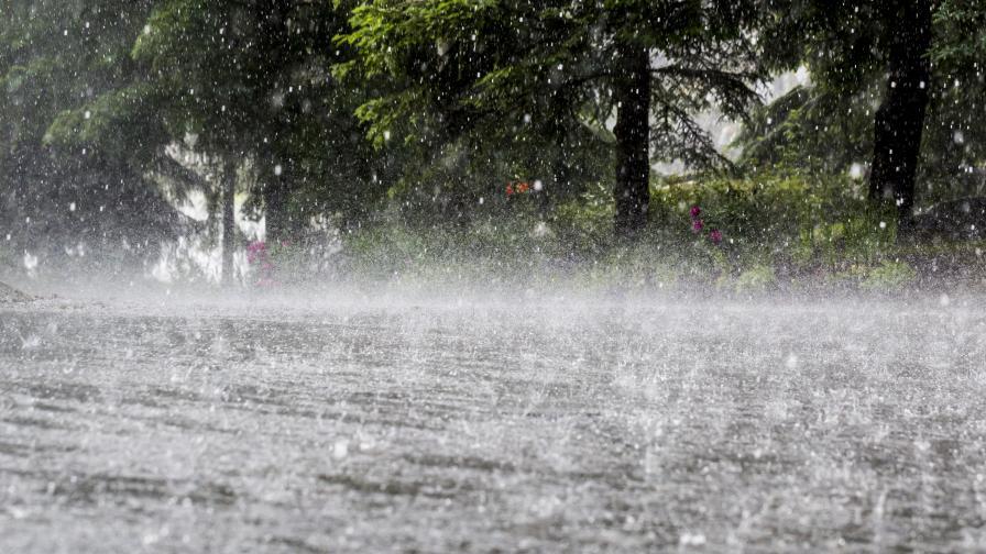 Поройни дъждове наводниха улици и дворове в Хитрино