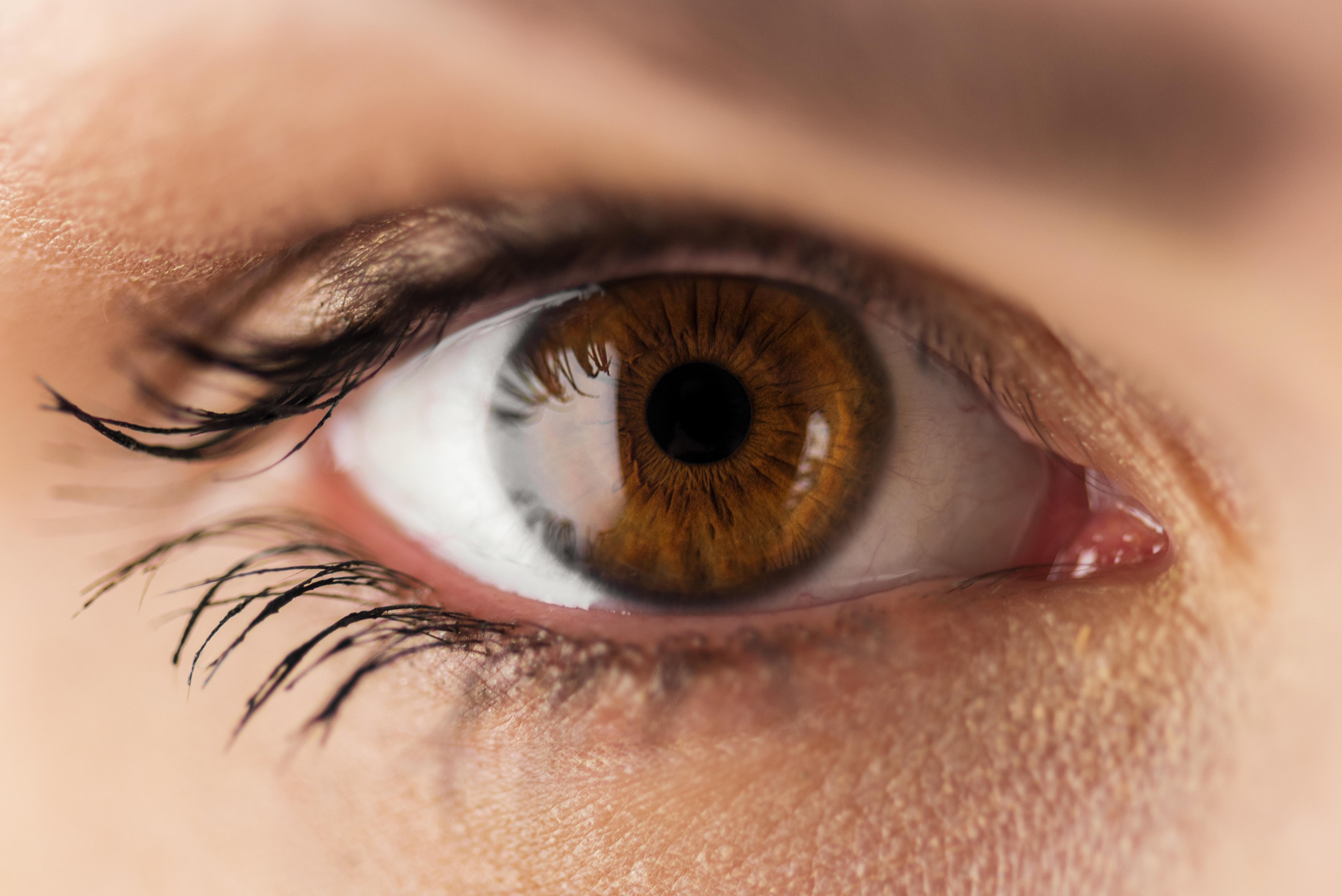 <p>Хората с кафяви очи, въпреки че са възприемани като по-малко атрактивни от останалите, са считани за сърдечни, будещи доверие и надеждни.&nbsp;Индивидите с очи с цвят на лешник са ценени заради страстта, която влагат в работата си, и постиганите високи професионални резултати.</p>