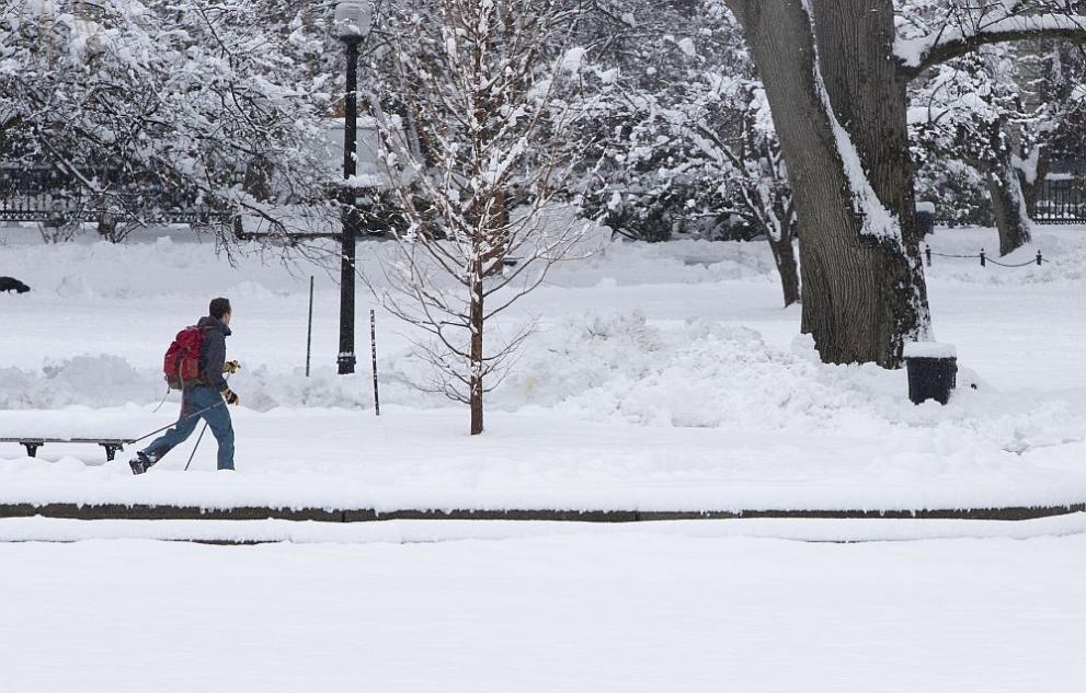 сняг САЩ
