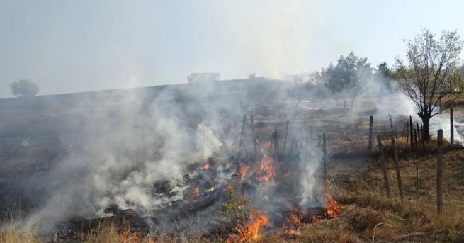Пожар пламна над благоевградското село Рилци. Гасиха син и баща,