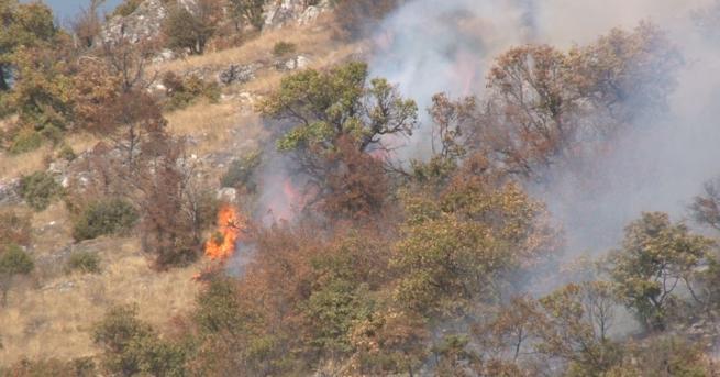 Пикник е причината за голям пожар в подножието на Бузлуджа.