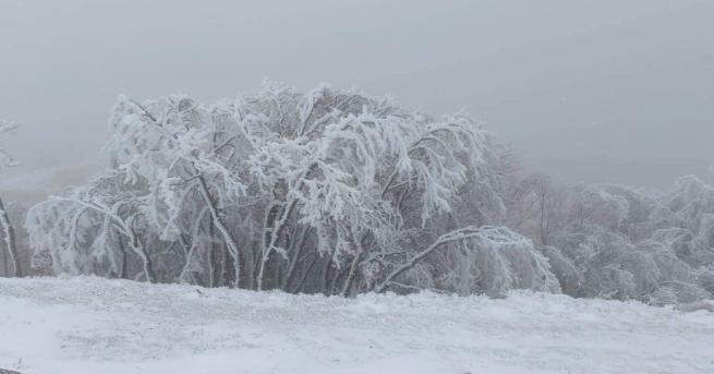 Първи сняг падна в прохода Шипка за тази зима. БГНЕСБГНЕС