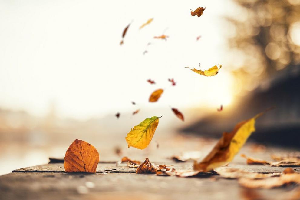 прогноза за времето есен вятър