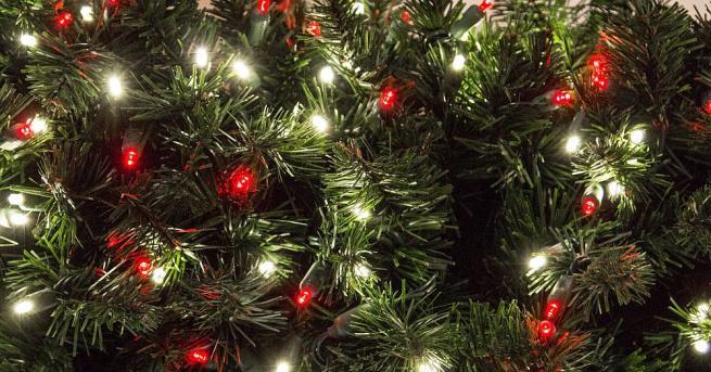 Запалени бяха над 18 000 LED светлини, използвани като украса