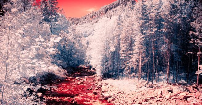 Южнокорейска река осъмна в червено, след като беше замърсена с
