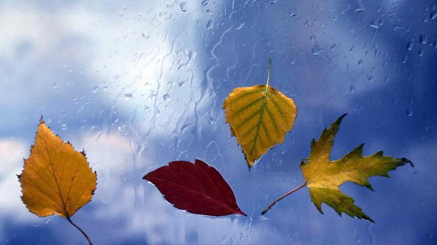 Дъждовно време, идва затопляне - кога