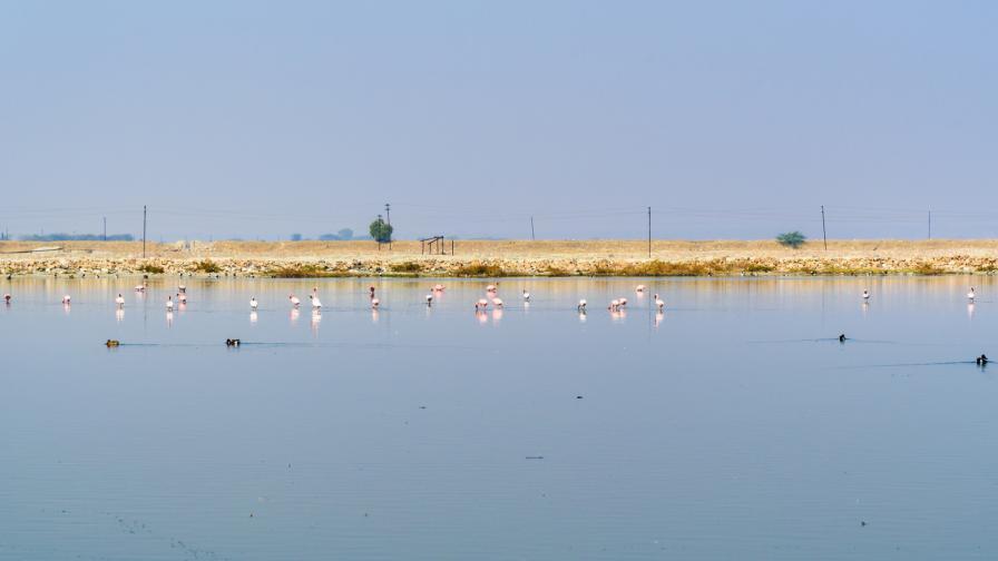 Соленото езеро Самбхар