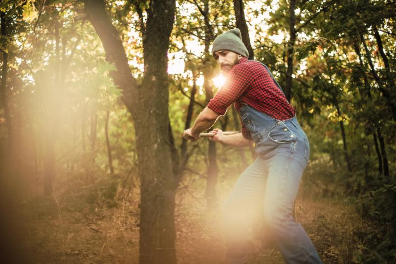 <p><strong>Страстите се увеличават</strong></p>  <p>Нивата на тестостерон на мъжете и жените са най-високи през есента. Според учените това е наследство от древните инстинкти за размножаване или въздействие от&nbsp;намаляващата се светлина, която някак увеличава нивата му.</p>