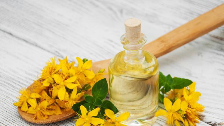 Полезните свойства на вълшебния жълт кантарион