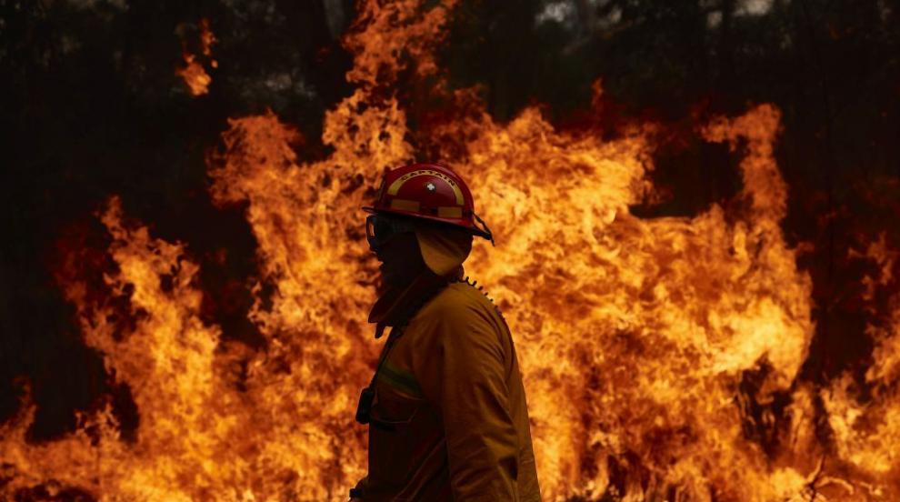 800 декара гора е унищожена при пожара край Шумен