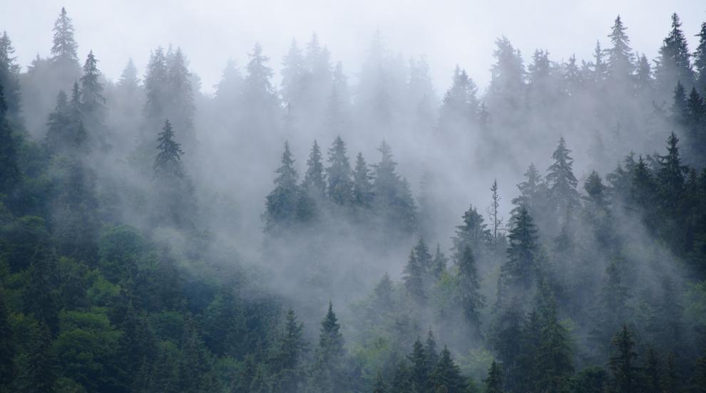 Облачно и мъгливо време през тази неделя