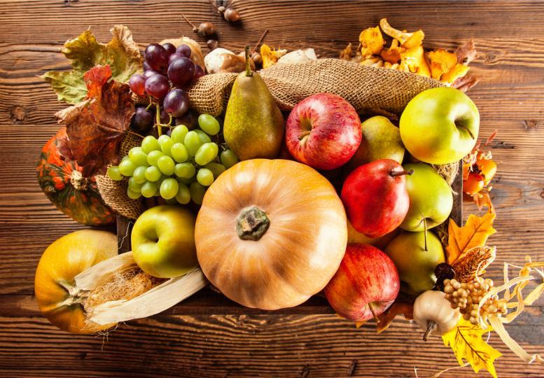 <p><strong>Подхранваща есенна маска за коса</strong><br /> 1 пасирана ябълка<br /> 1 жълтък<br /> 1 супена лъжица мед<br /> 1 супена лъжица гроздов сок<br /> 2 супени лъжица печена тиква</p>