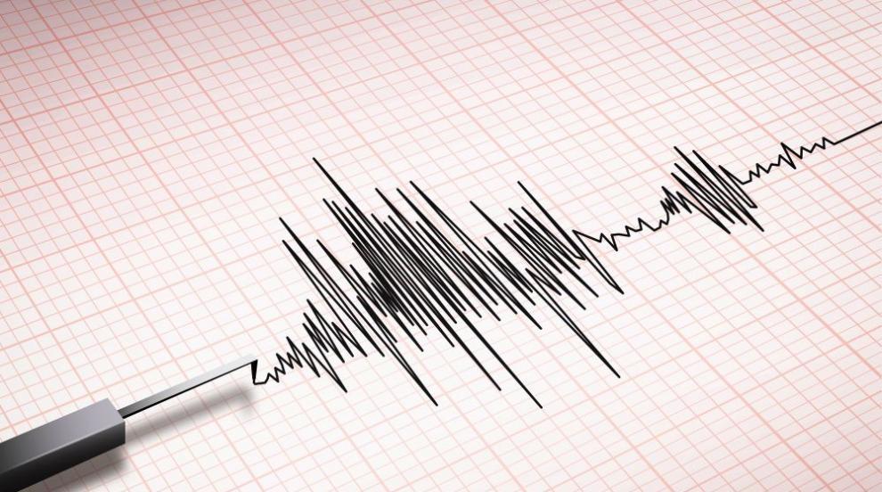 Земетресение с магнитуд 4,6 разтърси Турция