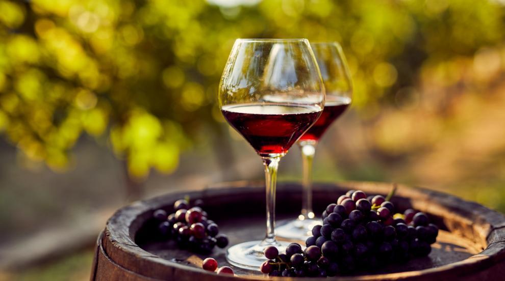 126 200 000 кг преработено грозде, виното ще е около 90 820 000 литра за 2019 г.
