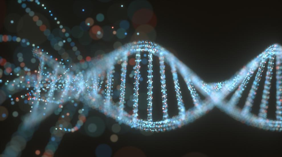 Форма на ДНК е с ключова роля за резистентност на туморите към терапиите