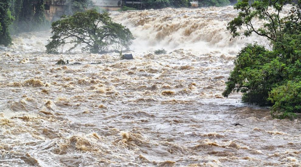 Проливен дъжд наводни къщи в добричко село