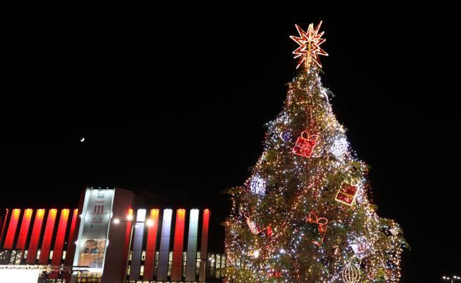 Коледната елха в София грейна