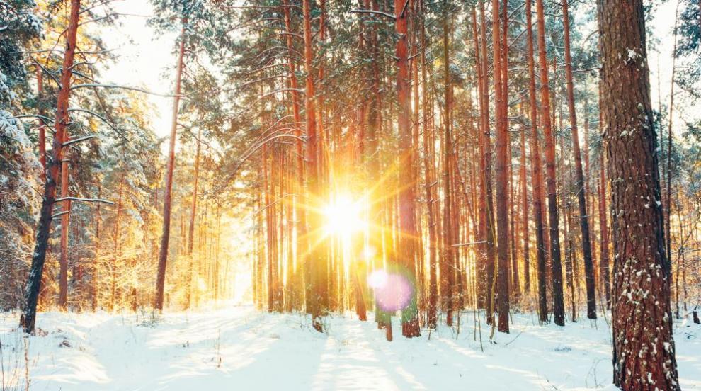 Първият ден от декември - снежен и слънчев