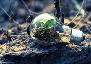 Честваме Световния ден на почвата