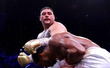 Руис решен отново да стане световен шампион