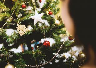 Естествена или изкуствена елха да купим тази година