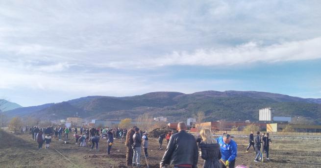 Нова зелена зона създадоха днес десетки асеновградчани. Те използваха чудесното