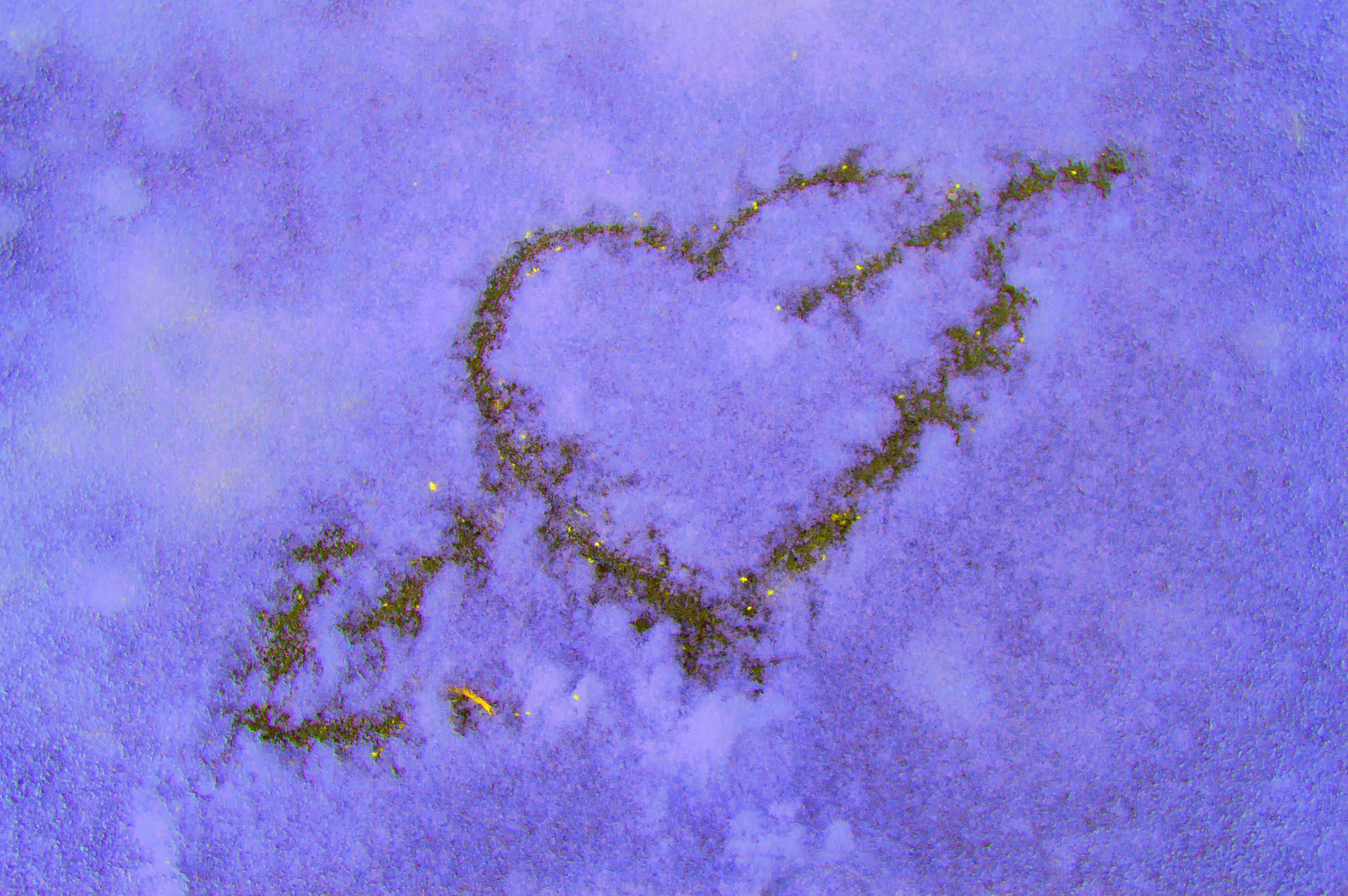 <p>Близнаци</p>  <p>Трябва да напълните бутилки спрей с боя за храна и да нарисувате истинско произведение на изкуството в снега!</p>