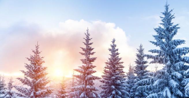 Климатологът проф. Георги Рачев даде прогнозата си до края на