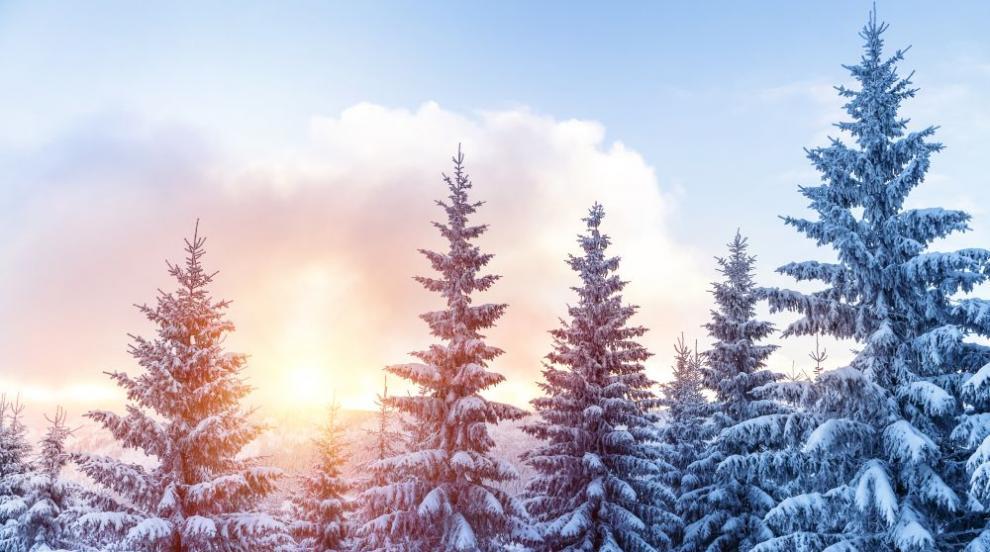 Ще вали ли сняг изобщо и топло ли ще бъде лятото? (ВИДЕО)