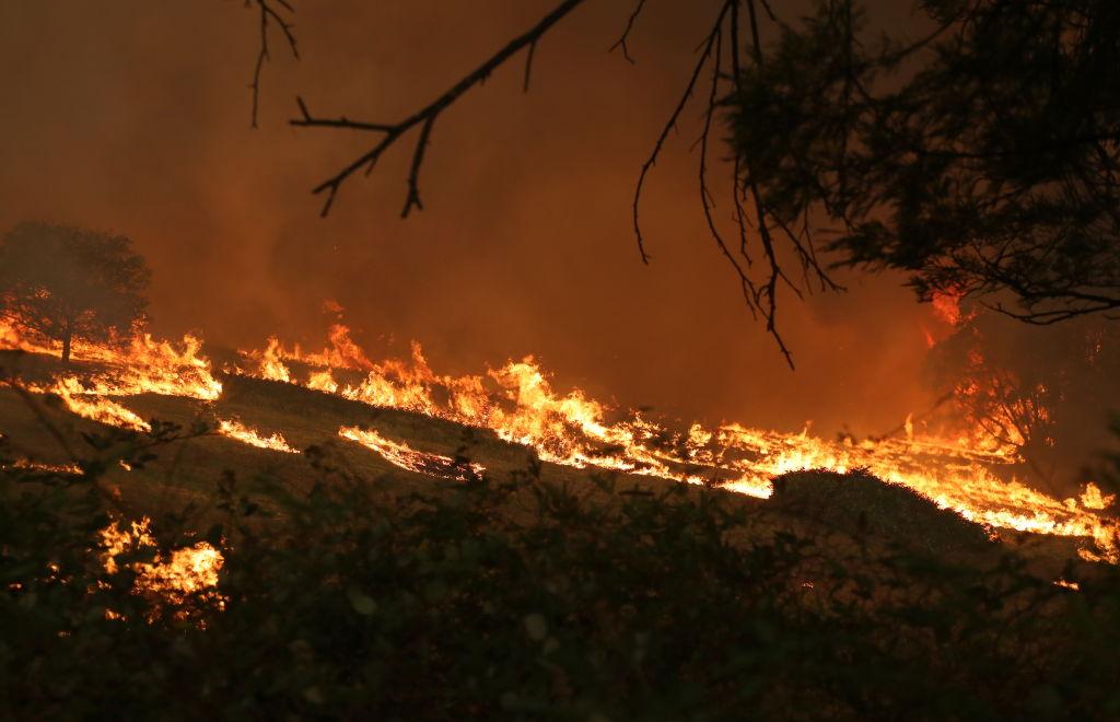 Пожарите в Австралия
