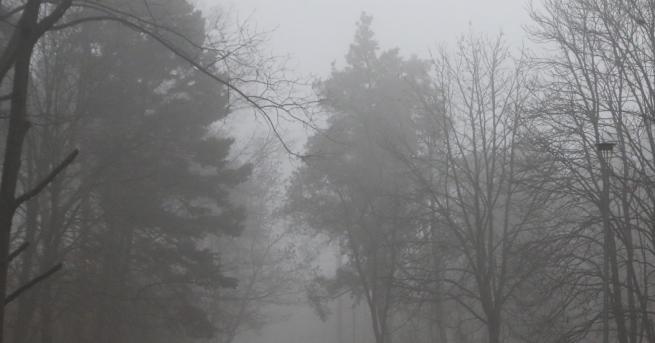 България Коронавирусът и мръсният въздух: Поглед в бъдещето Епидемията от