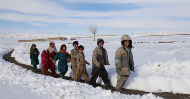 Снимка: Над 100 загинали след най-обилния снеговалеж в Пакистан от 100 години