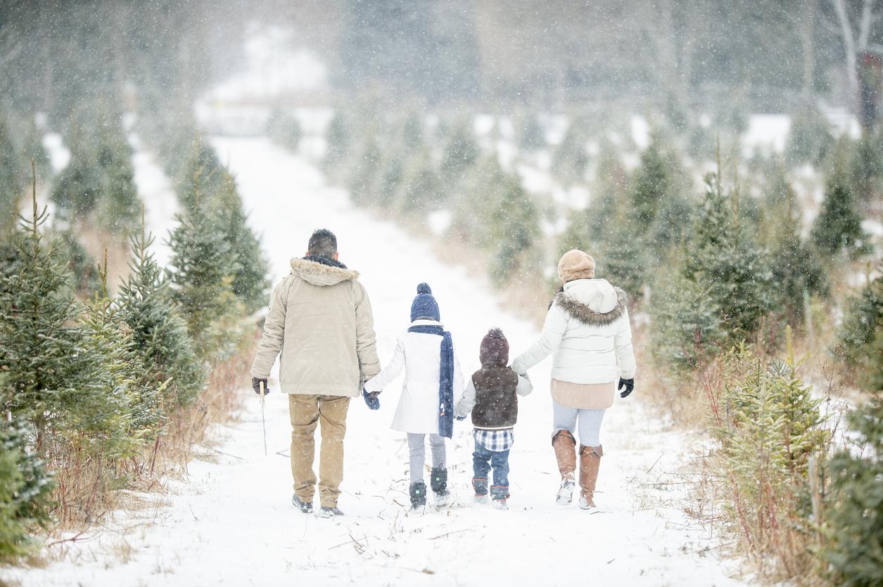 <p><strong>Помага в борбата с депресията</strong></p>  <p>След коледните и новогодишните празници много хора изпадат в депресивни състояния от различен характер. В такъв случай е препоръчително да прекарвате повече време на открито.</p>