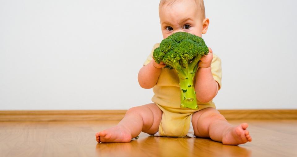 дете 1 година храна