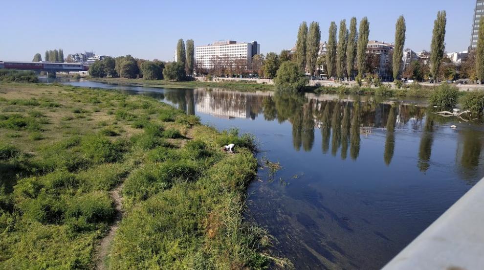 Очакват се резултати от пробите на водата в река...
