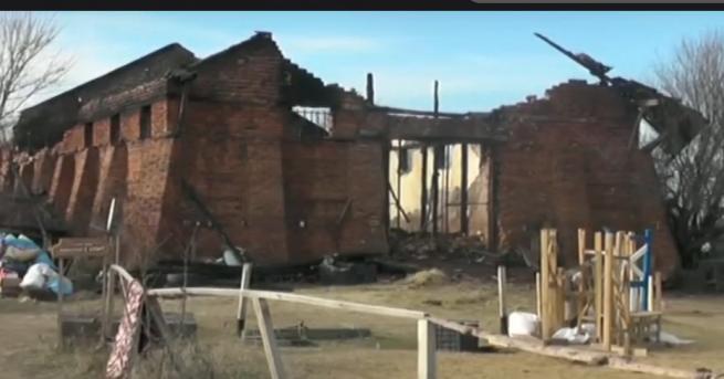 България Пожарът, изгорил 11 елитни коня, е предизвикан от късо