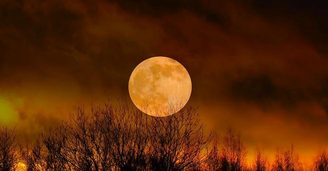 Гравитационното привличане между Земята и Луната не влияе само на
