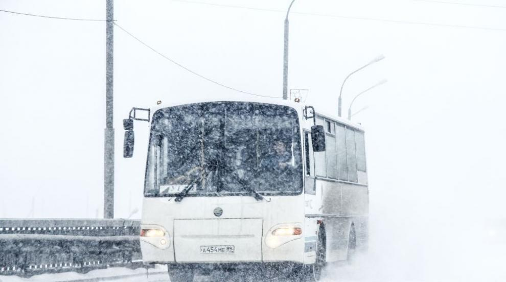 Автобуси с деца закъсаха на Витоша