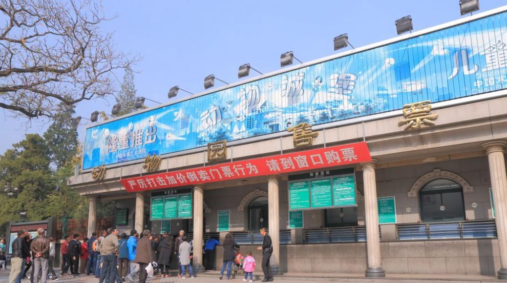 Зоопарк в Пекин работи и в онлайн режим заради...