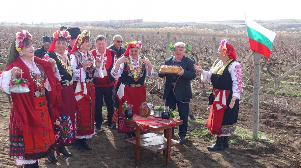 Десети юбилеен празник на виното в Гюльовца