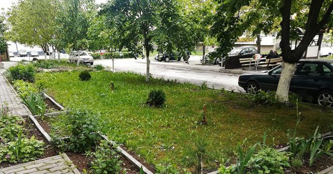 За десета поредна община Димитровград започва набиране на проекти от
