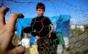 "Заловиха 15 нелегални мигранти в хладилен камион на ГКПП ""Дунав мост"" 2"