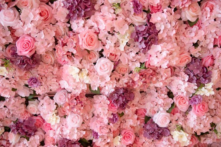 рози цветя