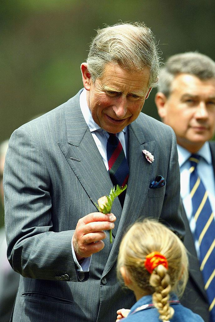<p><strong>Не смятат, че ще се справя добре</strong></p>  <p>Много британци смятат, че принцът няма да се справи със задълженията си на крал.</p>