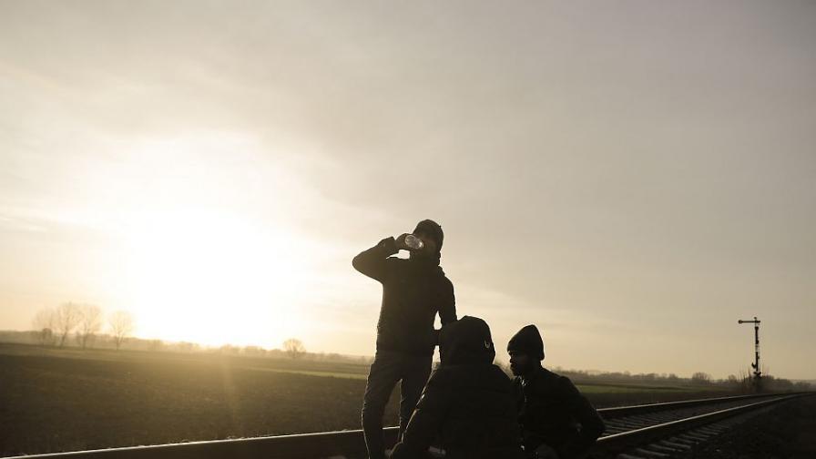 Заловиха голяма група нелегални мигранти край Герман