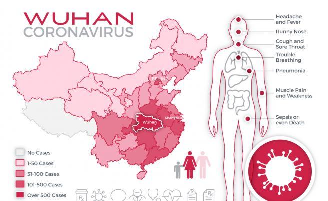 Учени с изненадващи разкрития за коронавируса